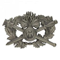 Insigne métal | Brevet Corps de Soutien Technique Administratif | 1er niveau