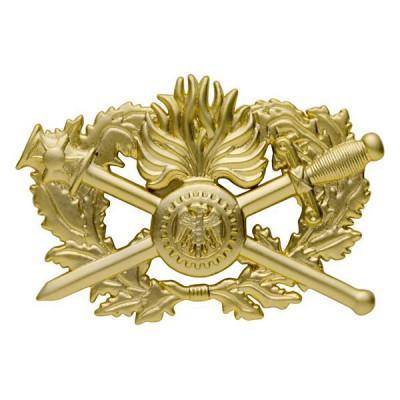 Insigne métal   Brevet Corps de Soutien Technique Administratif   2ème niveau