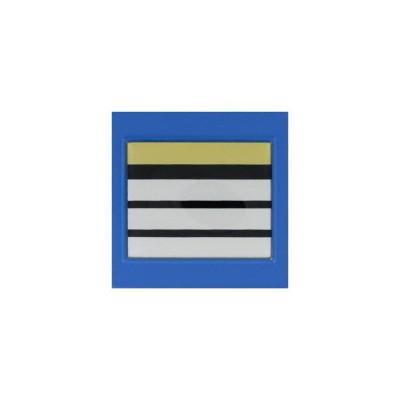 Galon de Poitrine Plastifié Police Municipale Directeur Stagiaire