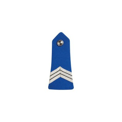 Pattes d'Epaules Bouton Police Municipale Gardien Principal