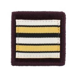 Galon de Poitrine Souple Lieutenant Colonel Vétérinaire Sapeurs Pompiers