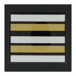 Galon de poitrine plastifié Gendarmerie Lieutenant Colonel