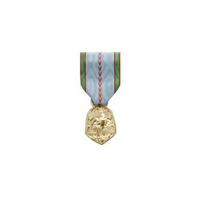 Médaille Commémorative 39 - 45